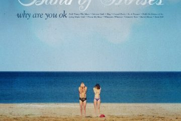band of horses why are you ok artwork